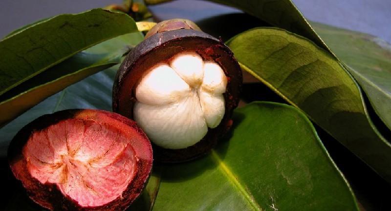 Сколько стоит в тайланде манго
