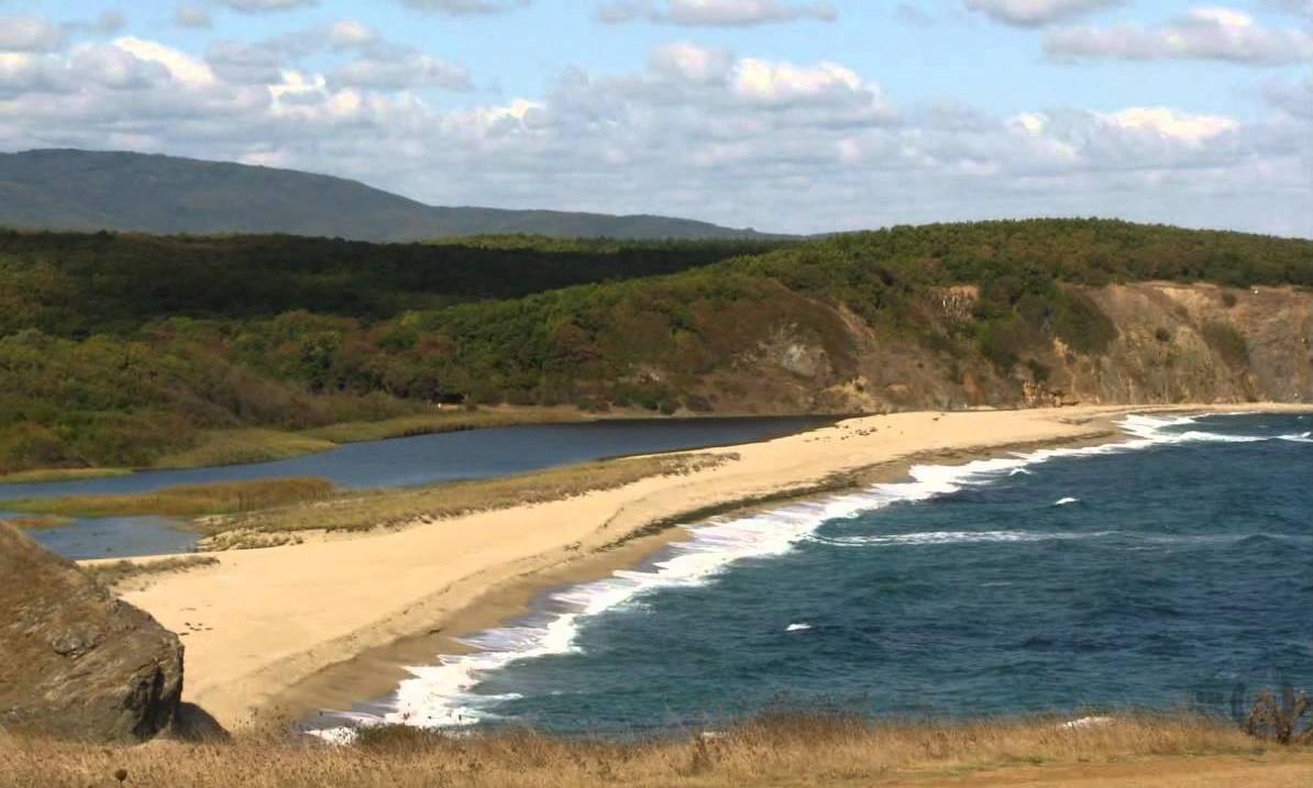 парфюмерия созополь пляж золотая рыбка представляет собой центральную